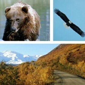 Visit Amazing Alaska
