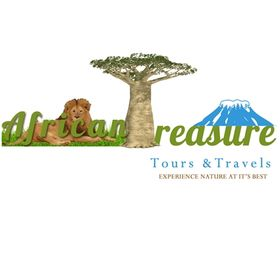 African Treasure Travel