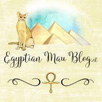 Egyptian Mau (Katzen-) Blog