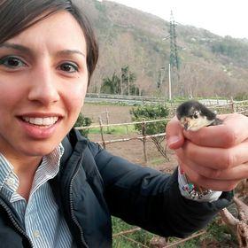 Francesca Vilardo