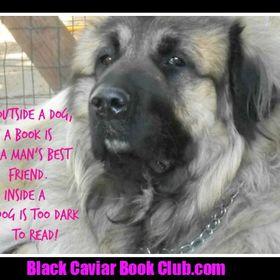 Black Caviar Book Club