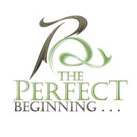 The Perfect Beginning