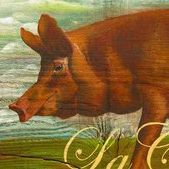 The Fine Swine