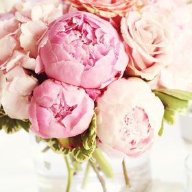 Just Pink Peonies