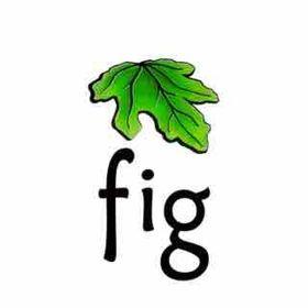 Fig Landscapes NZ