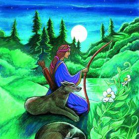 sadie's tarot and zodiac