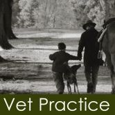The Vet Practice & Veterinary Integrative Medicine Centre