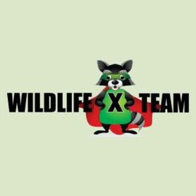 Wildlife X Team International