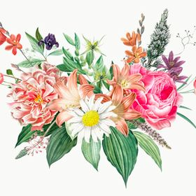 FloraFurora