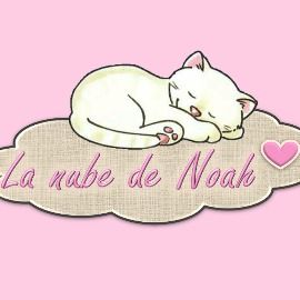 La nube de Noah