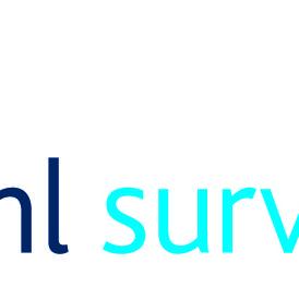 BHL Surveyors
