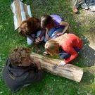Natur- und Wildnisschule Nawisho