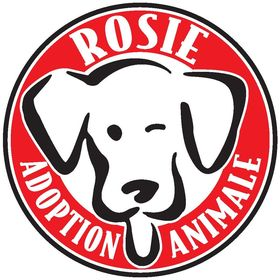 Rosie Animal Adoption
