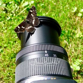 Lourdes Photography