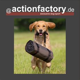 actionfactory