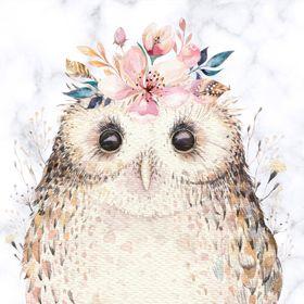 Owl Delights