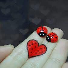 uğurböceği ♥