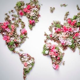 World Love Flowers
