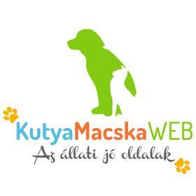 Kutya Macska Web