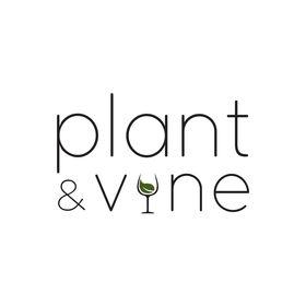 Plant and Vine