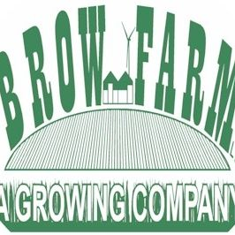 Brow Farm