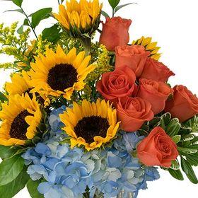 Heaven scent bonita flowers susie7950 on pinterest heaven scent bonita flowers mightylinksfo