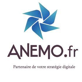 ANEMO, Agence WEB