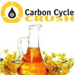 Carbon Cycle Crush