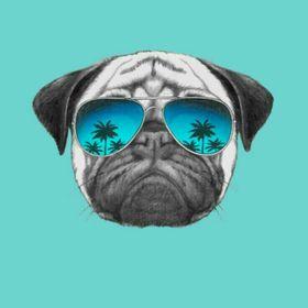 Rock Pug
