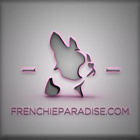 Frenchie Paradise