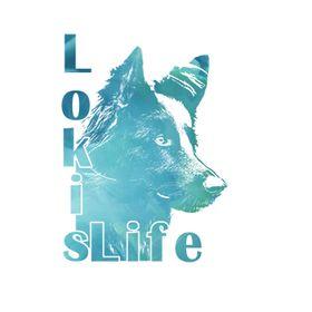 LokisLife | Blog zum Thema Hund