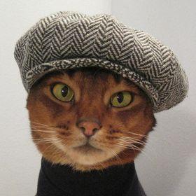 Kitty Kulture