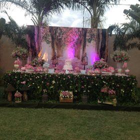 Fazendo festa by juliana Alencar Parente Meneses