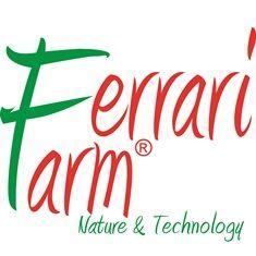 Ferrari Farm