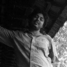 Sanjeev Beekeeper