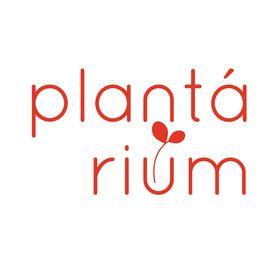 plantárium