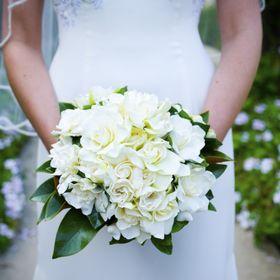 Fiona Curry Flowers