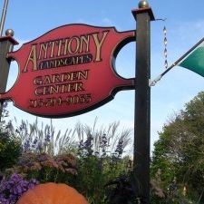 Anthony Landscapes