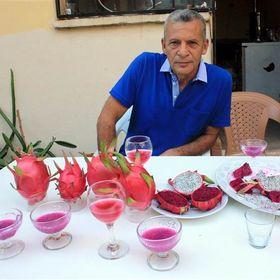 Pitaya Türkiye'de