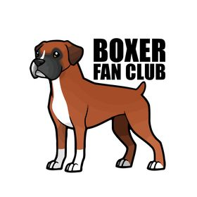 Boxer Fan Club