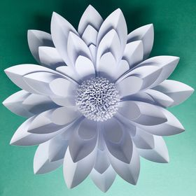 Paper Flower Company - Event and Wedding Decoration