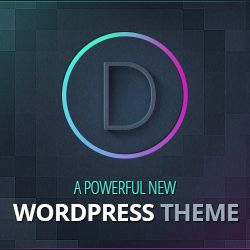 Divi Theme Examples