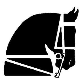 Saddle & Bridle