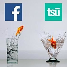 TSU Czech Network