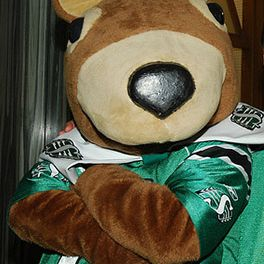 Gainer TheGopher