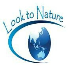 Look to Nature