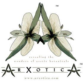 ArXotica Inc