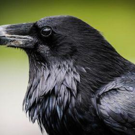 Lydia Raven