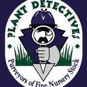 Plant Detectives