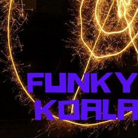 Funky Koala Vintage Shop